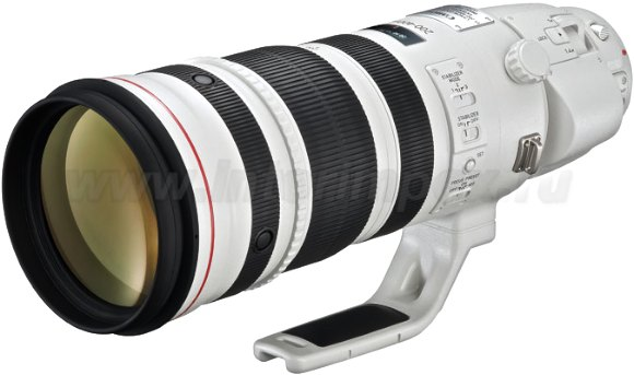Canon 200-400 F4 L IS USM EXTENDER 1.4×